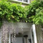 Wickham Cottage - The Bath Holiday Company - 39